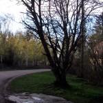 20120512_Talolan_uhrikallio-02